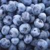 Homemade Raw Blueberry Jam: A Healthy Recipe That's Easy Too